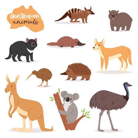 Australijskie zwierzęta wektor zwierzęcy charakter w dzikiej przyrody Australia kangur koala i dziobak ilustracja kreskówka dziki wombat i emu na białym tle.