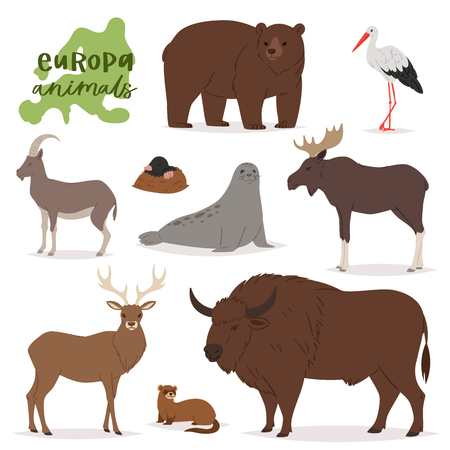Animal vector animalistic character in forest bear deer elk of Europe wildlife illustration set of European predator mountain goat isolated on white background. 矢量图像
