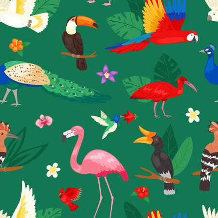Tropical birds vector exotic parrot or flamingo and peacock with palm leaves illustration set of fashion birdie ibis or hornbill in flowering tropics background.