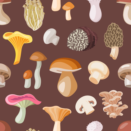 Mushroom vector natural fungus and mushrooming organic food illustration set of edible champignon isolated on background.