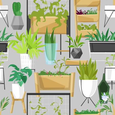 Plants in flowerpots vector potted houseplants indoor botanic cactuses aloe for house decoration with floral collection of botanical garden illustration isolated on background. Zdjęcie Seryjne - 124738874