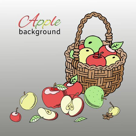 Apple basket background banner vector illustration. Bright colorful fruit in bucket or wooden container. Healthy fresh and organic food. Apple basket of different color and shape.