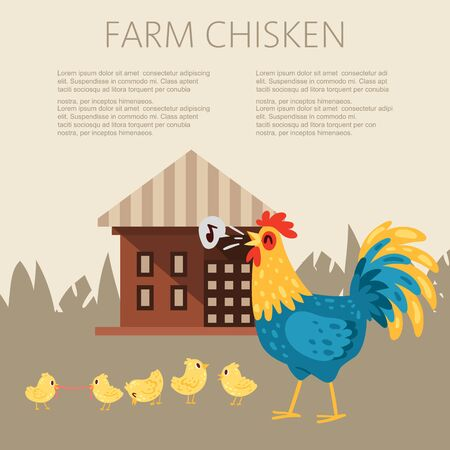 Farm chicken characters. Singing rooster banner vector flat illustration. Cute and funny hens. Cock looking after chicks while they scrounge for food. Animals near farm house.