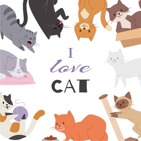 Cute kitty cat vector poster with different kitten breeds, toys, and food. Multi-colored pussycats with i love cat typography. Illustration Ilustração
