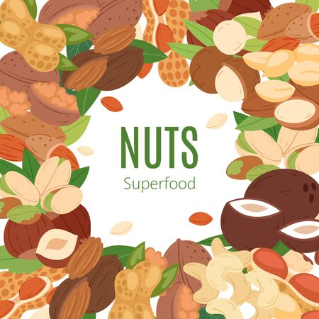 Nuts superfood collection flat cartoon banner vector illustration. Peanut, pistachio, cashew, coconut, hazelnut and macadamia. Healthy organic food, good snack. Nutrition and agriculture.