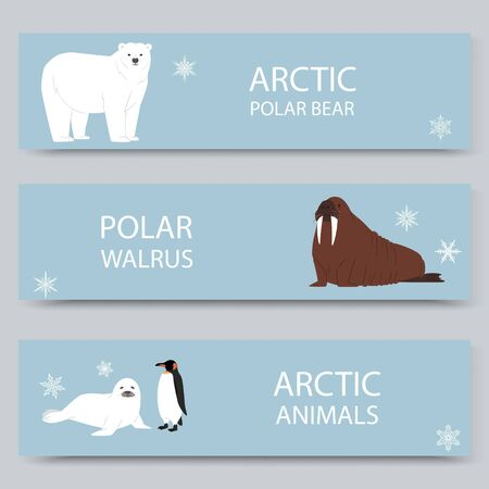 Arctic animals and north pole cartoon banners set, vector illustration. Antarctica and North Pole arctic animals, white bear, penguin, morse and furseal.