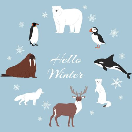 Arctic and antarctic animals vector set. Winter, nature and travel illustration. Penguin, polar bear, seal and reindeer, whale and fox on snowing winter arctic animals background. Stock Illustratie