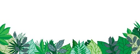 Green leaves gorizontal banner or poster with blanc space, vector illustration. Greenery foliage background with palm green leaves and trees. Çizim