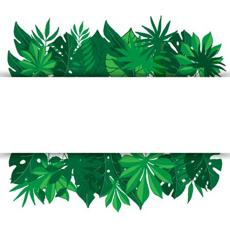 Tropical palm leaves banner, vector illustration. Green exotic foliage with palm leaves and white space for text. Jungle template for banners.