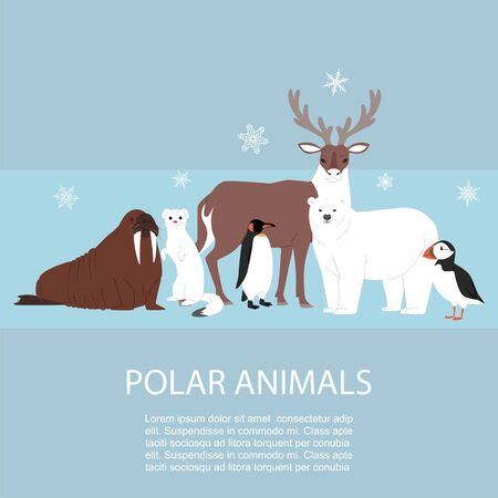Polar and arctic animals and birds vector illustration. Winter, wild polar nature and travel concept. Penguin, polar bear, seal and reindeer on snowing arctic animals background.