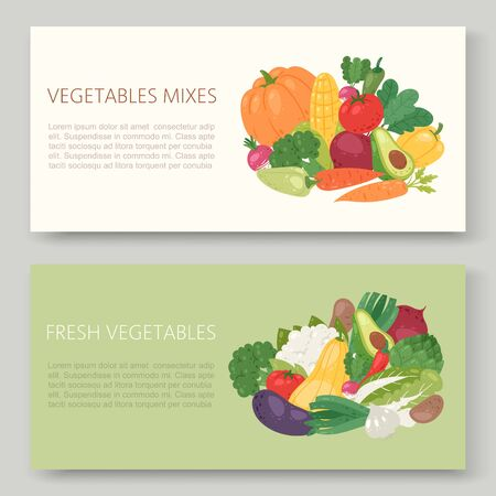 Fresh eco vegetables vector illustration banner set. Healthy life, organic vegetables food. Avocado, corn, squash, cucamber and tomato, eggplant, carrot and pepper.