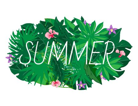 Summer leaves vector illustration. Exotic palm leaves and flowers, jungle leaf. Beautiful floral tropical summer foliage banner for sale.