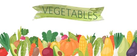 Organic vegetables vector illustration banner. Healthy life, organic vegetables food. Cartoon avocado, corn, squash, cucamber and tomato, eggplant, carrot and pepper with green ribbon.