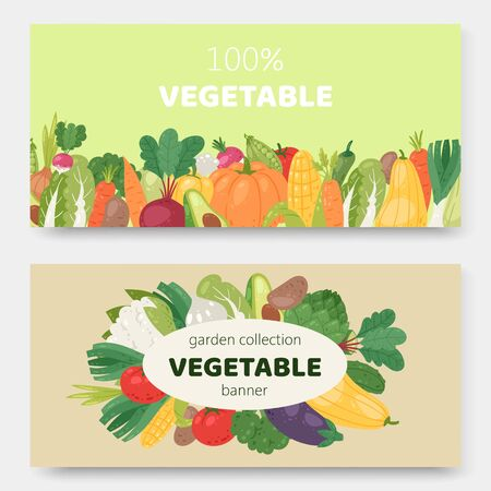 Garden eco vegetables vector illustration banners. Ecological organic vegetables food. Cartoon avocado, corn, squash, cucamber and tomato, eggplant, carrot and pepper.