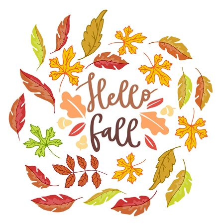 Hello fall autumn poster with bright autumn birch, elm, oak, rowan and maple leaves isolated on white background vector illustration. Falling cartoon colorful fall leaves poster.