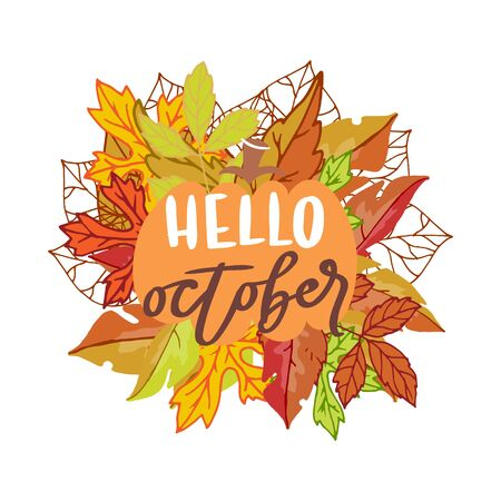 Hello october banner with bright autumn birch, elm, oak, rowan and maple leaves with lettering vector illustration. Autumn cartoon colorful leaves poster.