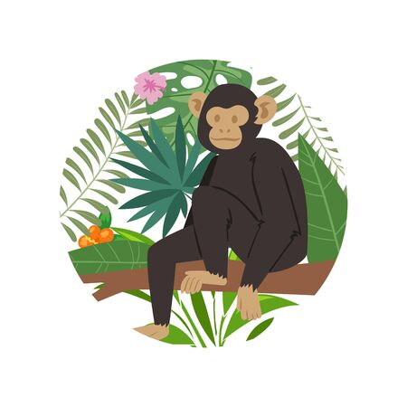 Monkey animal marmoset on tropical tree with palm monstera leaves vector illustration. Jungle exotic monkey marmoset on floral background isolated on white. Zoo banner element in cirlce.