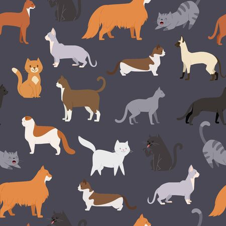 Cute cats of different breeds in various poses vector seamless pattern illustration. Cartoon kitten standing and sitting. Kitty and cats print backdrop for pet shop poster, wrapping or textile.