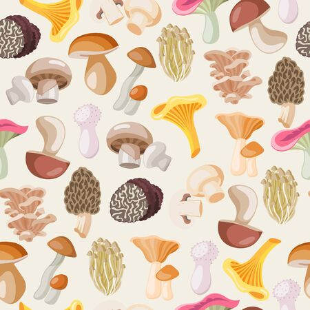 Mushrooms edible vegeterian organic mushrooming seamless pattern, vector illustration. Cartoon champignon and boletus or forest chanterelle and lobster mushrooms isolated on white background.
