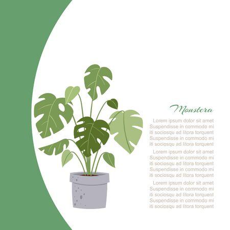 Monstera-Heimpflanze, Baum im Topfvektorillustrationsplakat mit Textraum. Innengrün und Büroanlage. Monstera-Blätter für die Innendekoration.