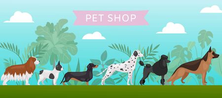 Pet shop banner with different breeds dogs, petshop service vector illustration. Food for big size dogs and home pets. Happy and friendly dogs, dalmatian, bulldog, beagle and poodel with typography.