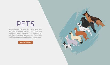 Pets shop web banner with different dogs and cats, petshop or veterinary service and food vector illustration. Food for big size dogs and cats. Happy and friendly cartoon pets with typography.