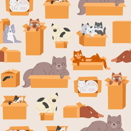 Cats in cardboard transportation boxes cartoon seamless pattern vector illustration. Cute kittens and cats looking out of box background for domestic animals petshop. Ilustração
