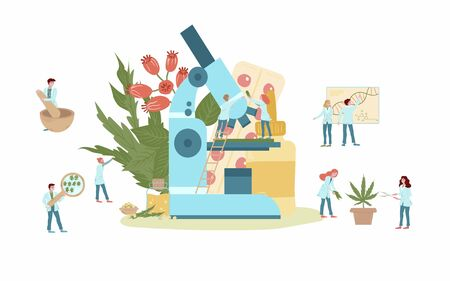 Naturophapy and traditional medicine, natural medicines and tablets of medicinal plant extracts, doctors with herbs, plants, microscope and healing products flat vector illustration. Homeopathy. Vectores