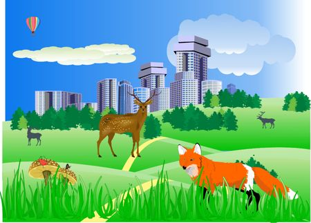 Vector illustration of countryside and wild animals Vector