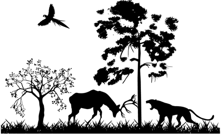 Forest life silhouettes Vector