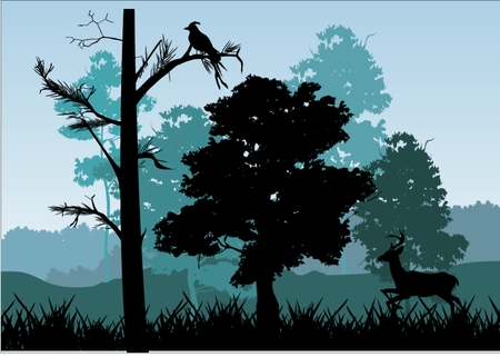 Natural landscape silhouette: deer under trees birds on branchtrees and grass silhouettes colors with blue shadows. All objects groupped and separeted Vector