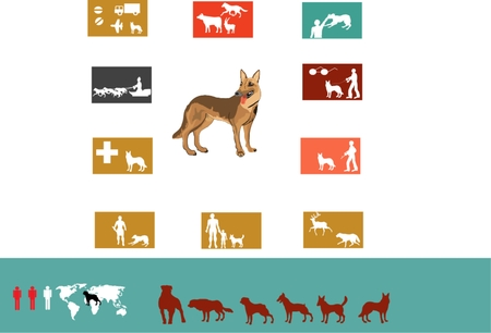 describing: Dog function describing icons set isolated on white illustration. Dog in center