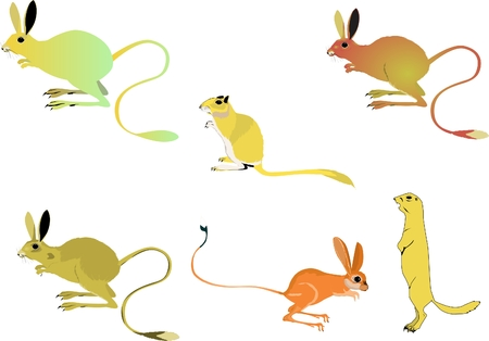 rodents: Set of desert rodents isolated on white Illustration