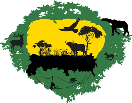 outback australia: Wildlife vector illustration. Animals and trees black silhouettes on yellow and green background
