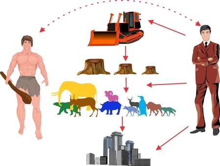 deforestation: Deforestation of the earth. Infographic template. Vector illustration Illustration