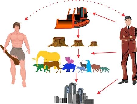 deforestacion: La deforestación de la tierra. Infografía plantilla. Ilustración vectorial