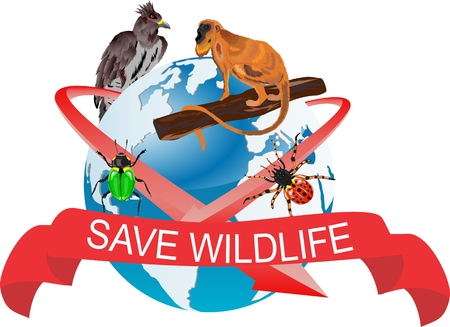 wildlife: Save wildlife illustration, monkey, eagle and beetles on globe