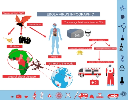 epidemy: Ebola virus epidemy infographic illustration