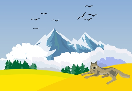 moutains: Vector nature landscape, moutains, hills and wolf lying on the ground Illustration