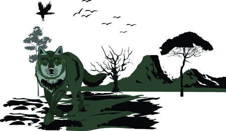 lands: Vector illustration of wolf in standing pose. Vector nature landscape, trees, mountains, lands silhouettes. Illustration
