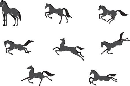 carreras de caballos: Caballos en diferentes poses conjunto de vectores, aislado en blanco