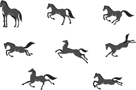 mustang horse: Horses in different poses vector set, isolated on white