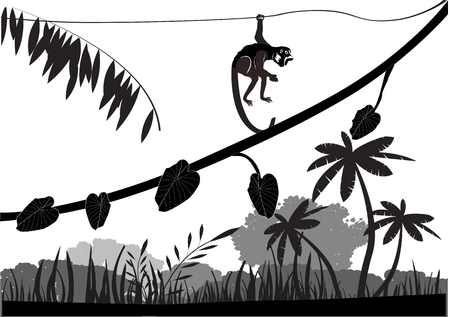 apes: Jungle animals silhouettes vector illustration. Apes, leopard, tree silhouettes