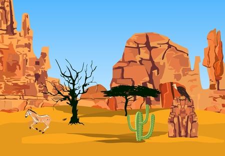 rocky mountain: Mountains, rocks, highlands, desert, cactus, trees. Vector illustration