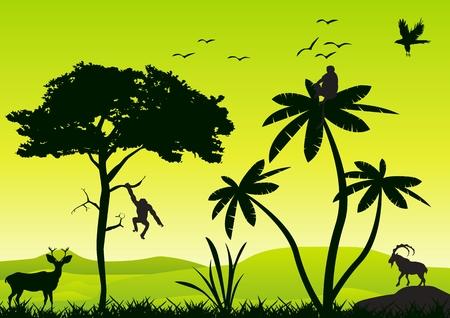 jungle scene: Vector landscape wildlife silhouette. Trees. grass, animals silhouette.