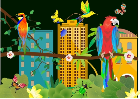 tropical rainforest: Tropical rainforest and mans urban buldings seen through the trees. Parrot and kingfisher on tree branch Illustration