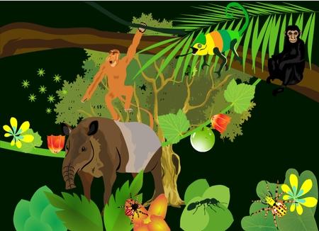 howler: In south american rainforest, tapir, howler monkeys, plants, flowers. illustration Illustration