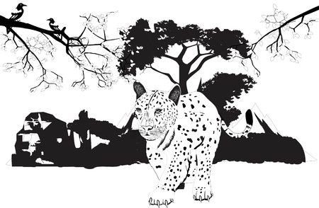 panthera: Leopard walking forest on background, tree branches, vector illustration