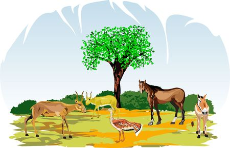 wildlife: Asian animals on natural wildlife condition Illustration
