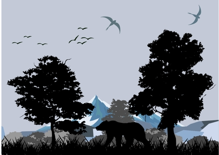 wildlife: silhouettes of wildlife bear, nature illustration.